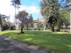 ea_Asmara_terra_parco